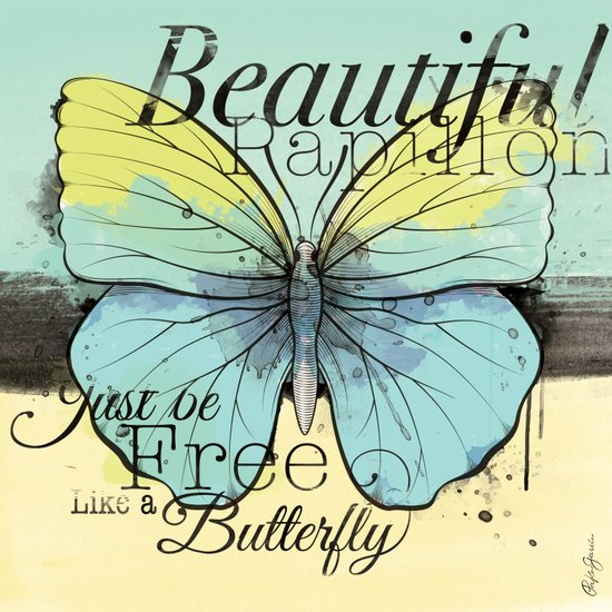 Beautiful Papillon ( butterfly ) Art Print