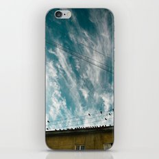Doves and Wire#2 iPhone & iPod Skin