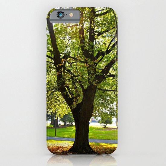 Autumn sun shines iPhone & iPod Case