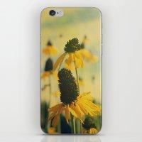 Summer Sunshine iPhone & iPod Skin
