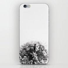 Summer Job iPhone & iPod Skin