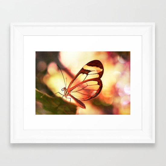 Butterfly 01 Framed Art Print