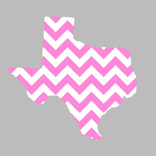 TEXAS {PINK} Canvas Print