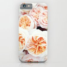 Garden Roses iPhone 6 Slim Case