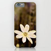 The last flower of Summer iPhone 6 Slim Case