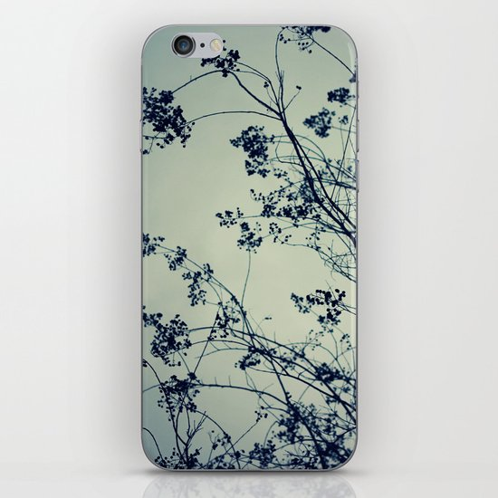 The Chill Factor iPhone & iPod Skin
