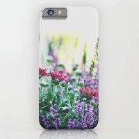 FANTASY COLORS iPhone 6 Slim Case