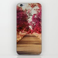 Camino iPhone & iPod Skin