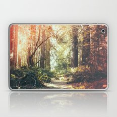 Beautiful California Redwoods Laptop & iPad Skin
