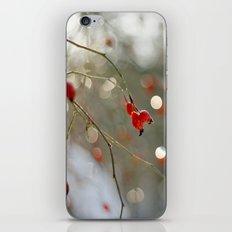 ROSEHIP AND BOKEH iPhone & iPod Skin