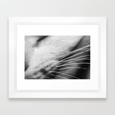 Listen up Meow Framed Art Print