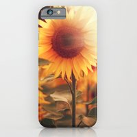 iPhone & iPod Case featuring Sunflower. by Julia Dávila-Lampe