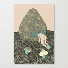 Onion Feed Canvas Print