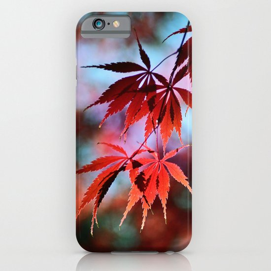 Japanese Red Maple iPhone & iPod Case