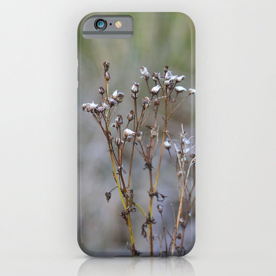Frosty Seeds iPhone & iPod Case