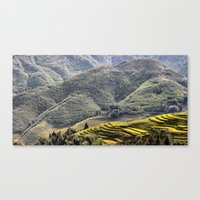 Teraces of Rice Canvas Print