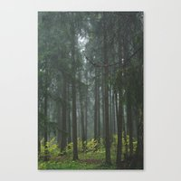 Forest#1 Canvas Print