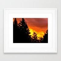 Sunset Pines Framed Art Print
