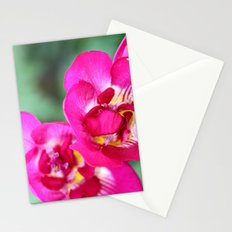 pretty pink flowers. Stationery Cards
