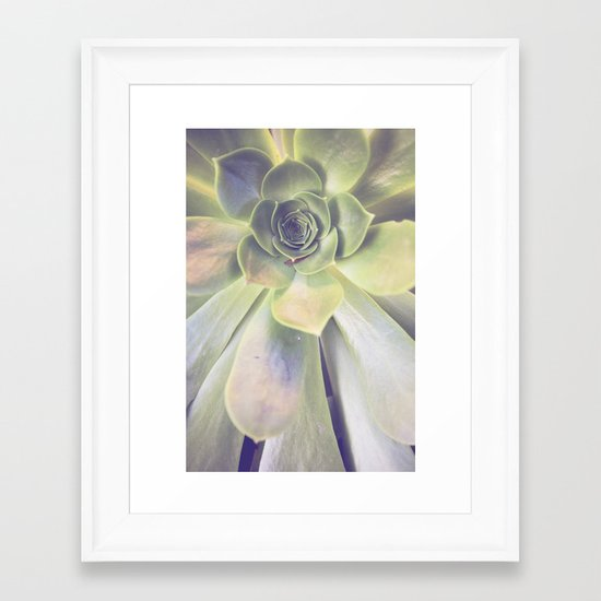 Succulent II Framed Art Print