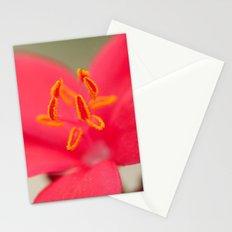 Pastel Flower 196 Stationery Cards