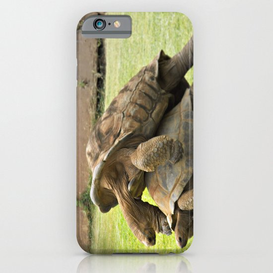 Turtle Porn iPhone & iPod Case