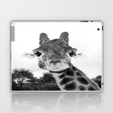 Giraffe. B+W. Laptop & iPad Skin