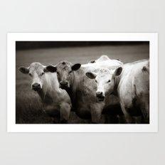 Cow Talk Art Print