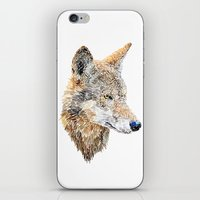 Wolf Head 2 iPhone & iPod Skin