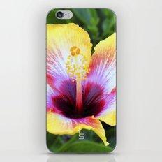 Hibiscus I iPhone & iPod Skin