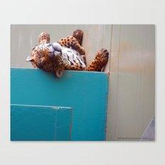 Reclining Jaguar Canvas Print
