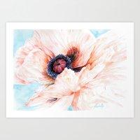 Oriental Poppy Art Print