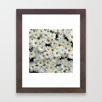 Daisyland Framed Art Print