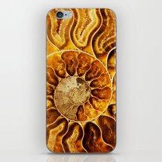 AMAZING AMMONITE iPhone & iPod Skin
