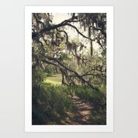 Southern Secrets I Art Print