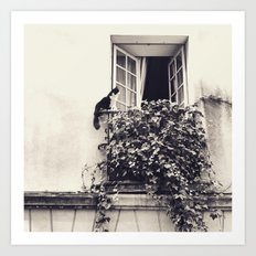 Paris Cat Art Print