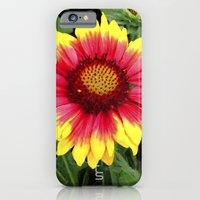 iPhone & iPod Case featuring Sunset Blossom by TS Photography