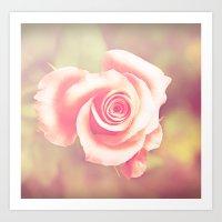 Candy Rose Art Print