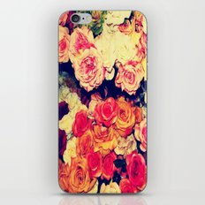 rage iPhone & iPod Skin