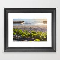 Follow Me To The Sea Framed Art Print
