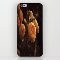 The Golden Rose iPhone & iPod Skin