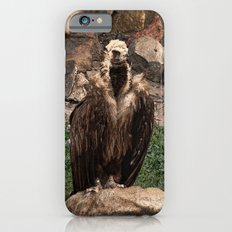 Bird of prey Slim Case iPhone 6s