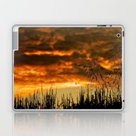 Goodbye Daylight Laptop & iPad Skin