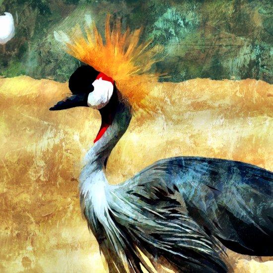 The Grey Crowned Crane Art Print