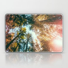 California Redwoods Sun-rays and Sky Laptop & iPad Skin