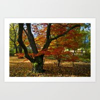 Red Autumnal Leaves Art Print
