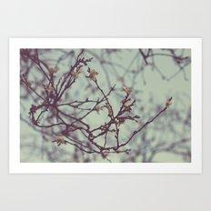 Flaking petals Art Print