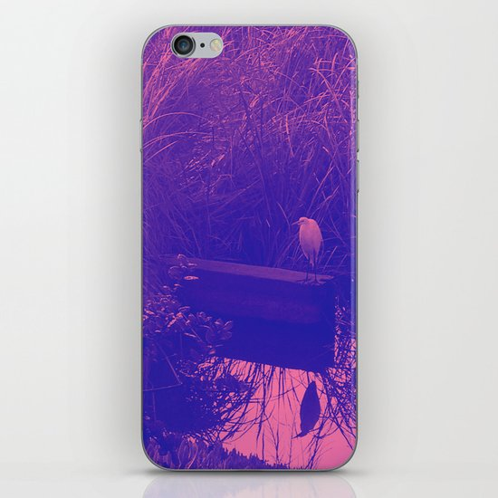 in the reeds iPhone & iPod Skin