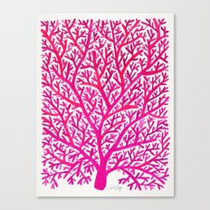 Fan Coral – Pink Ombré Canvas Print