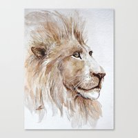 Wise lion Canvas Print